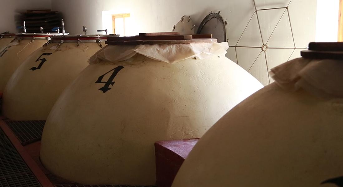 Ruta del Vino Castilla La Mancha - Servicios en Tomelloso - Bodegas Lahoz