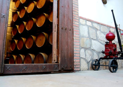 Turismo del vino en Bodega Campos de Dulcinea