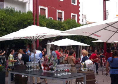 Catas_Vina-E-Alcázar-de-San-Juan
